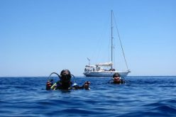 Liveaboard Diving Sites Around Komodo National Park