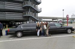 Top listed parks of New York to tour with New York limo service